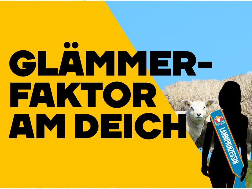 nordfrieslamm_header_mitmachen-prinzessin_mobile@2x
